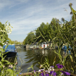 Blue Wave houseboat rental amsterdam